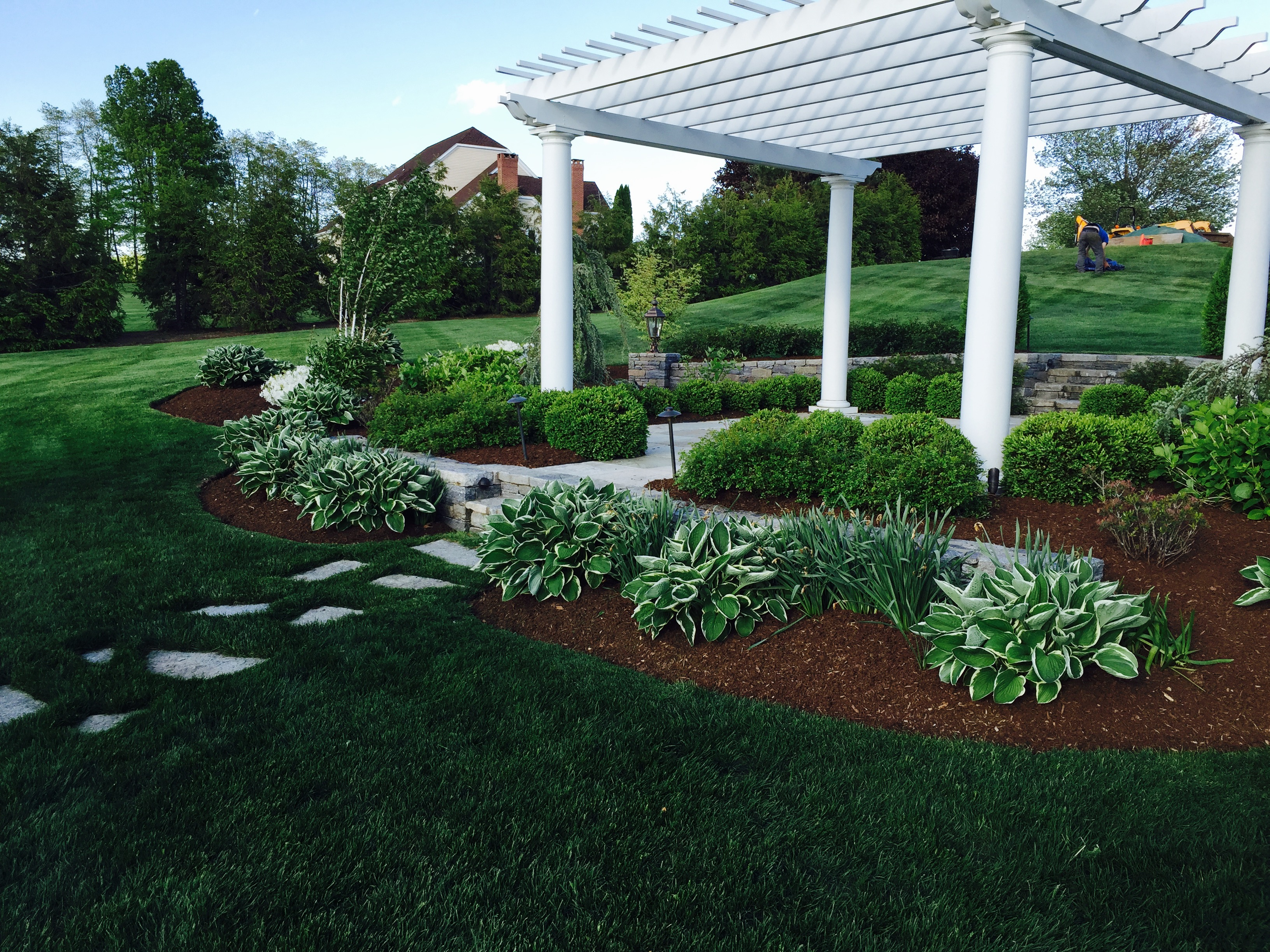 shrubs and trees gallery quality landscaping